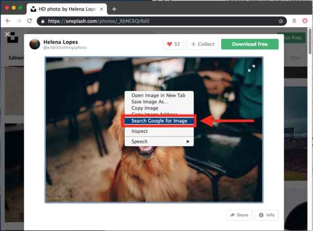 How to reverse image search with Google Chrome