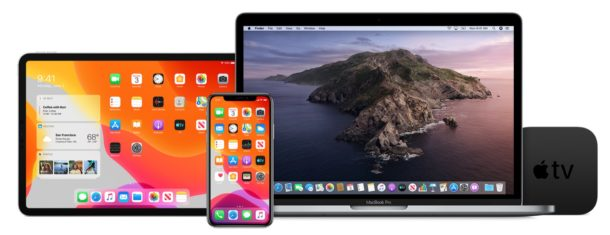 iOS 13.4 GM, ipadOS 13.4 GM, MacOS Catalina 10.15.4 beta 6