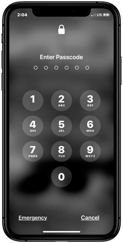 The passcode lock screen on iPhone or iPad
