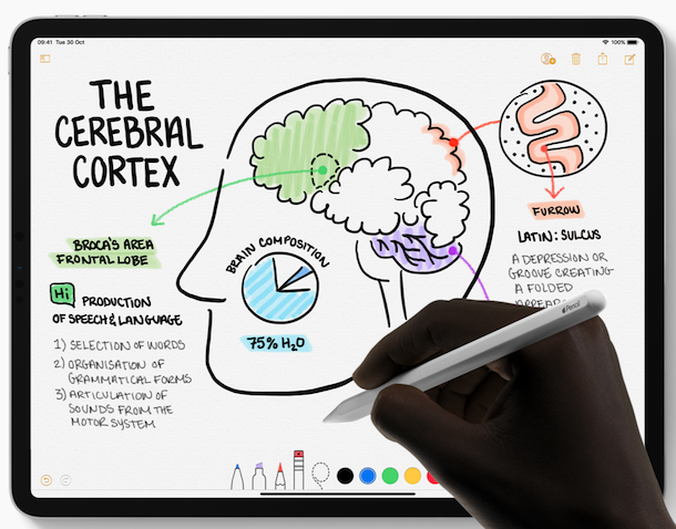 Apple pencil in-use
