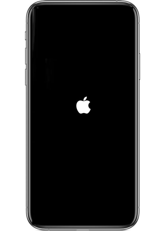 A force restarting iPhone 11 or iPhone 11 Pro looks like this with an Apple logo on screen
