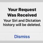 How to delete Siri audio history on iPhone and iPad