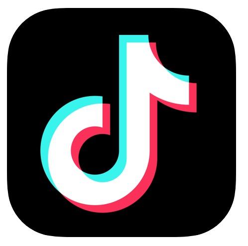 Download videos from TikTok