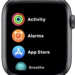 Apple Watch apps in a list view