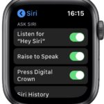 Apple Watch Raise To Speak