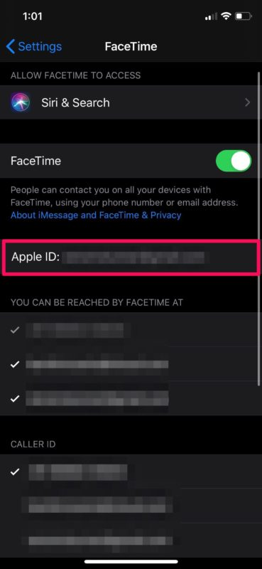 Troubleshoot Group FaceTime Not Working on iPhone