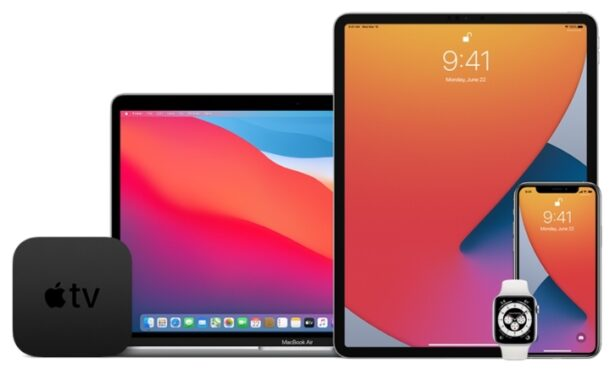 iPadOS 14 and iOS 14 public beta