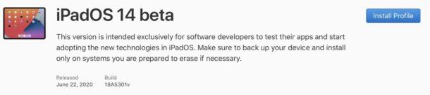 iPadOS 14 beta download profile