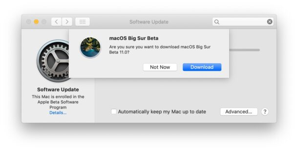 Download macOS Big Sur beta in software update