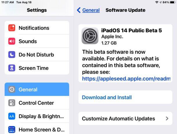 iPadOS 14 beta 5