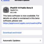 ipados 14 beta 8