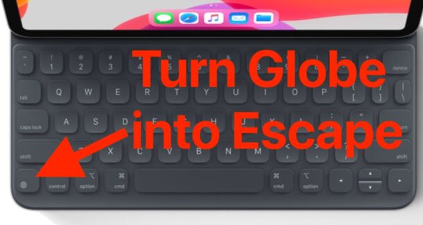 Turn the Globe key to ESC on iPad Keyboard
