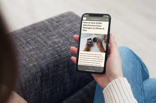 How to Change Reader View Font & Background on iPhone