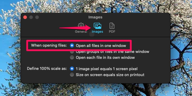 How to Batch Convert WebP Images to JPG on Mac