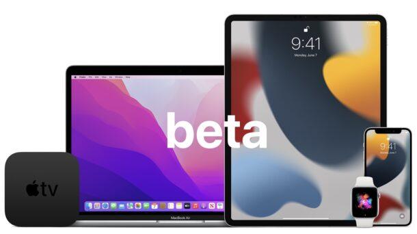 iOS 15, iPadOS 15, MacOS Monterey public betas