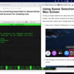 Bonsai Browser on Mac